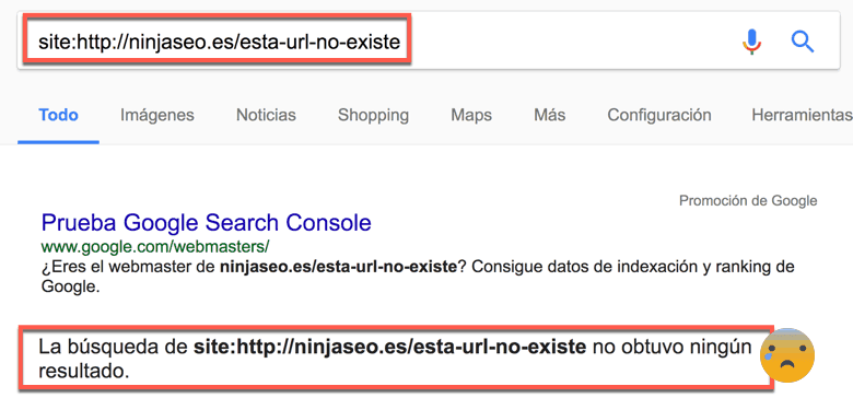 URL-no-indexada-en-Google