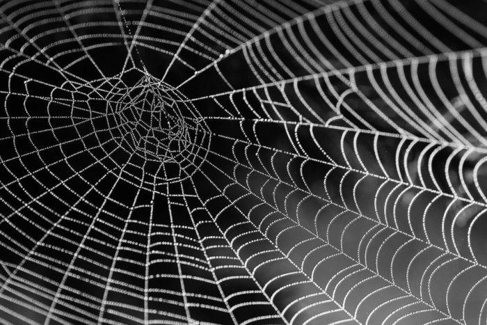 ¿Qué es un sitio web?  Y su importancia en mi web empresarial