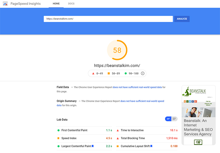 PageSpeed Insights Score y colibríes.
