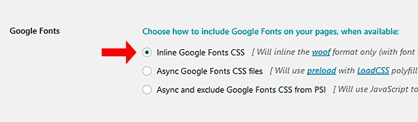 Complemento Google Fonts para Fast Velocity Minify